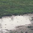 雨の日のゴルフを楽しむために~装備と心得~