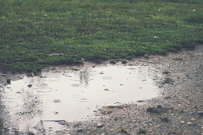 ゴルフ 雨