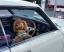 ペットと一緒におでかけ&ドライブ!関東の犬連れOKのおすすめ観光スポット10選