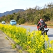 車で行きたい!千葉県のドライブスポット10選