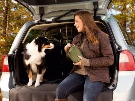 今年は戌年!愛犬とドライブに行くなら、どの車がおすすめ?