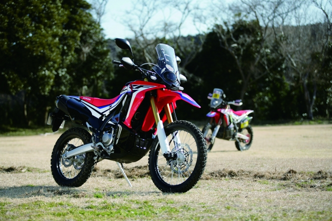 アヘッド HONDA CRF250RALLY