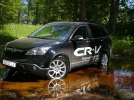 トヨタ ヴァンガードとホンダ CR-Vを比較!販売台数で大きく差がついた理由はコンセプトの違い?