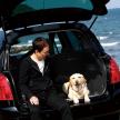 """自動車評論家から見た""""犬にやさしいクルマ""""って?"""