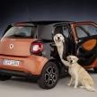 車の最大乗車定員、大型犬はカウントされる?