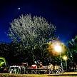 秋冬キャンプで月をみよう♪ 家族で「観月会」月にまつわるオススメ絵本も紹介