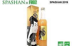 .スパシャン2019 SPASHAN カーシャンプー 洗車 カーケア コーティング剤
