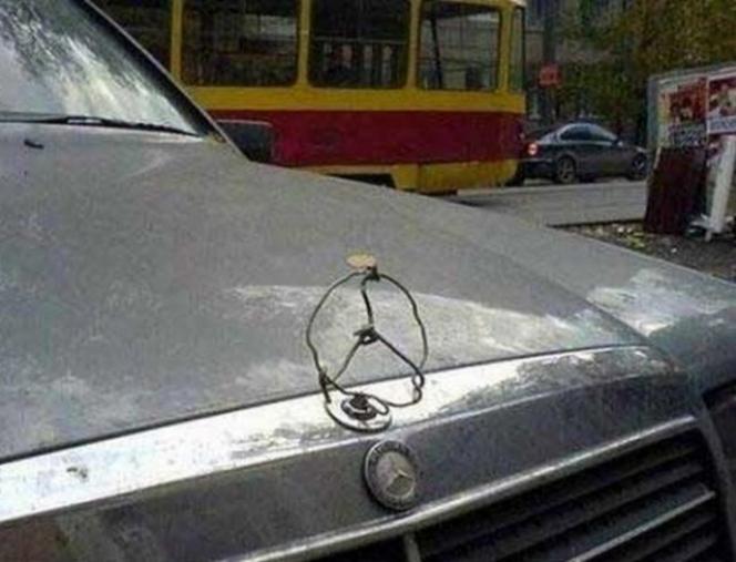 改造車 ギャラリー