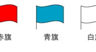 サーキットで振られる旗の種類