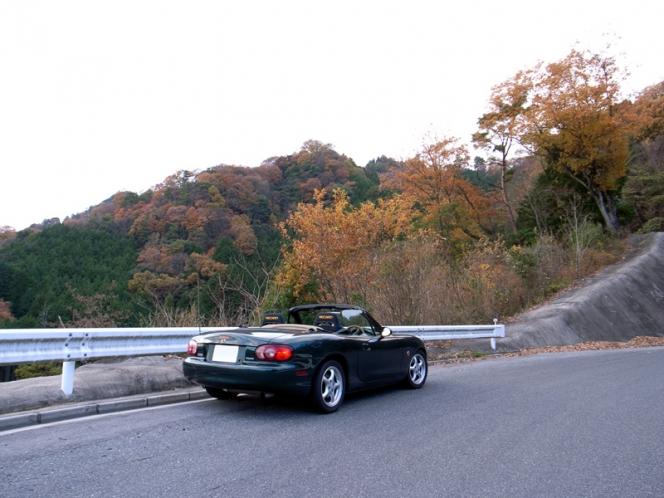 オープンカー 秋