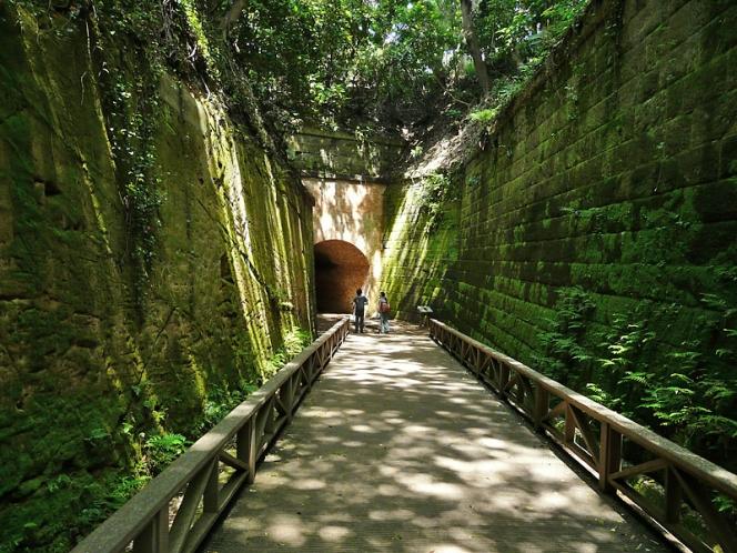 横須賀の猿島