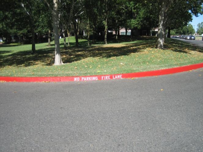 赤 道路の線 アメリカ