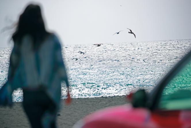 アヘッド 春の海へ