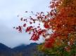 紅葉や雪景色など絶景ドライブ!「岐阜・奥飛騨温泉郷」周辺観光スポットおすすめ10選