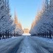 関東で大雪!雪道を夏タイヤで走ると違反ですよ。