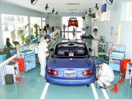 「マイナンバー制度」導入で車検が楽になる?運転免許証への影響は?