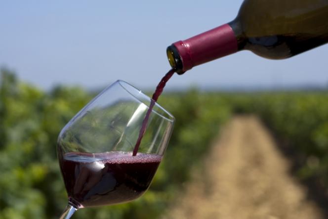 ランボルギーニ ワイン