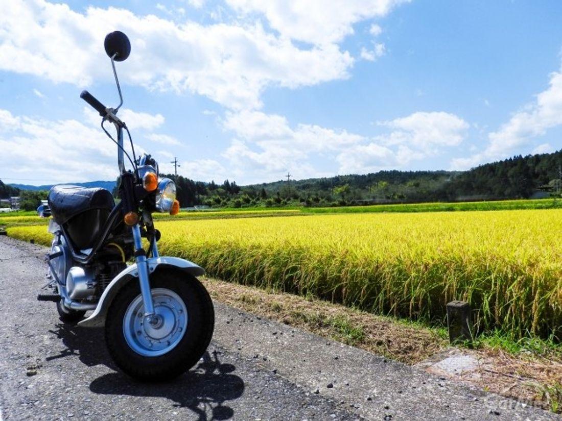 特約 保険 料 ファミリー バイク